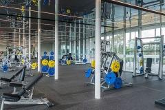 fitness-bg